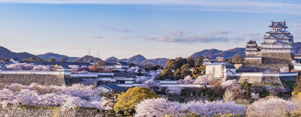 Himeji Castle half-day walking tour