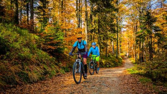 Biking tour on Ljubljana's MTB trail