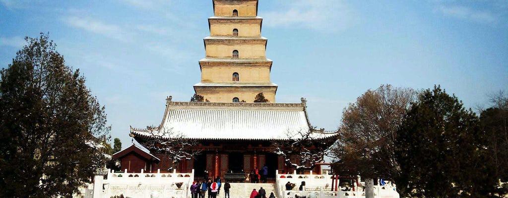 Visita privada de Xian aos Guerreiros de Terracota, Muralha da Cidade e Pagode do Ganso Selvagem