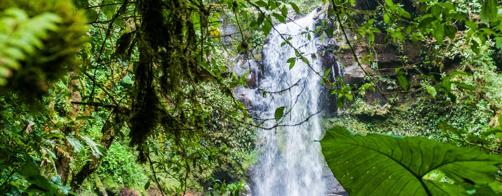 Panama's deep jungle excursion
