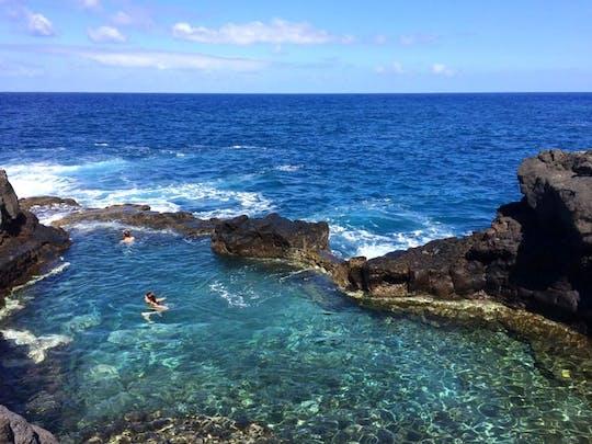 Tour of La Palma's Botanical North