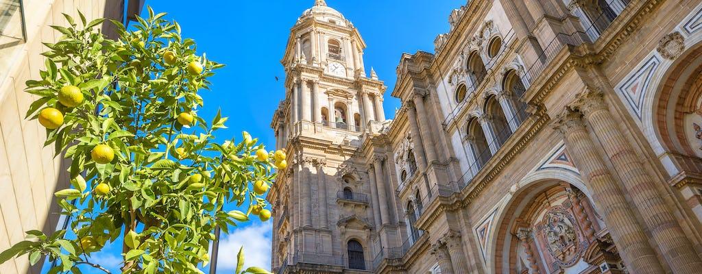 Punti salienti di Malaga con il tour della Cattedrale