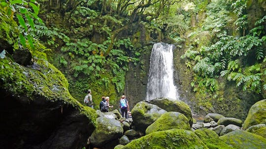 Faial da Terra and Salto do Prego full-day hiking tour