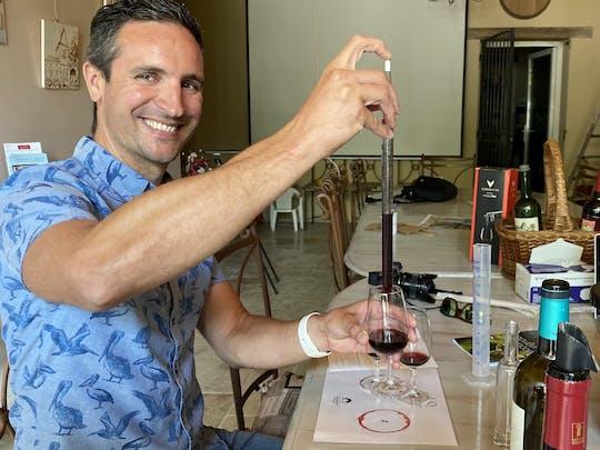 Visite privée et dégustation de vin à Saint-Emilion