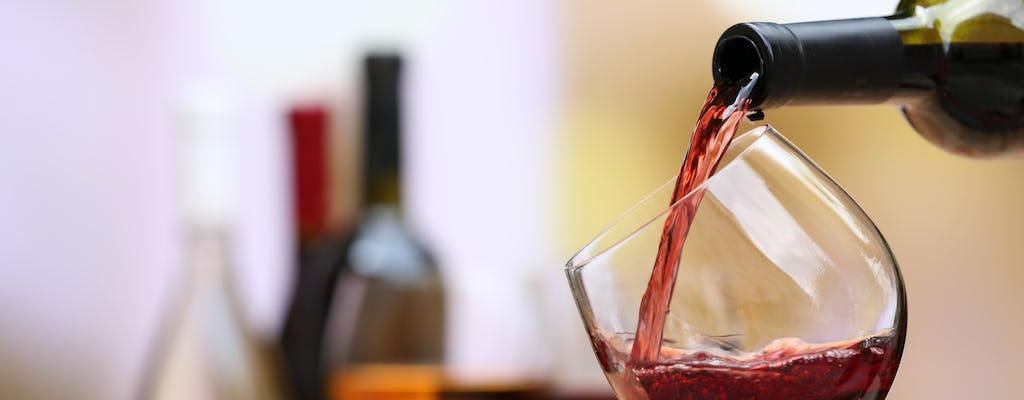 Tour y cata de vinos en la Viña Chaupi