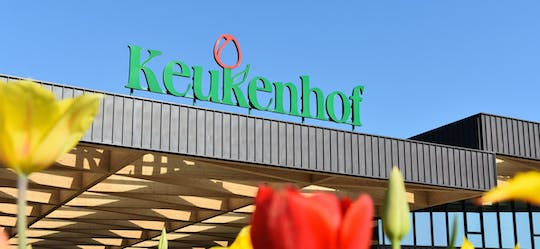 Keukenhof fast-track ticket with transfer from Amsterdam