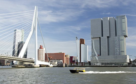 Rotterdam walking tour with Markthal, Cube Houses, water taxi and rooftop views