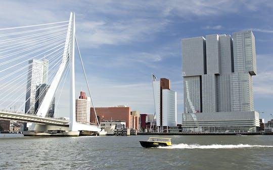 Passeio a pé por Rotterdam com Markthal, Cube Houses, táxi aquático e vistas panorâmicas
