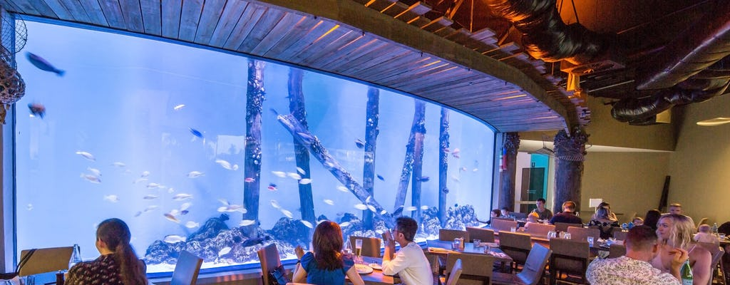 Cairns-aquarium en stadsrondrit met kleine groepen