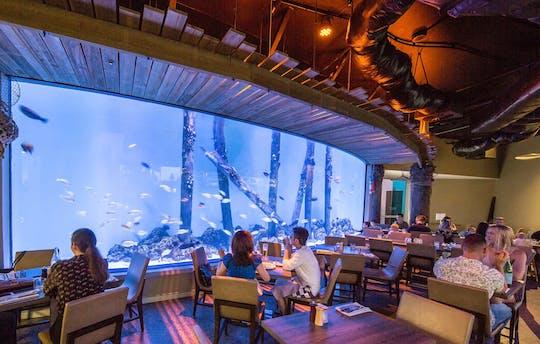 Recorrido turístico por la ciudad y el acuario de Cairns para grupos pequeños
