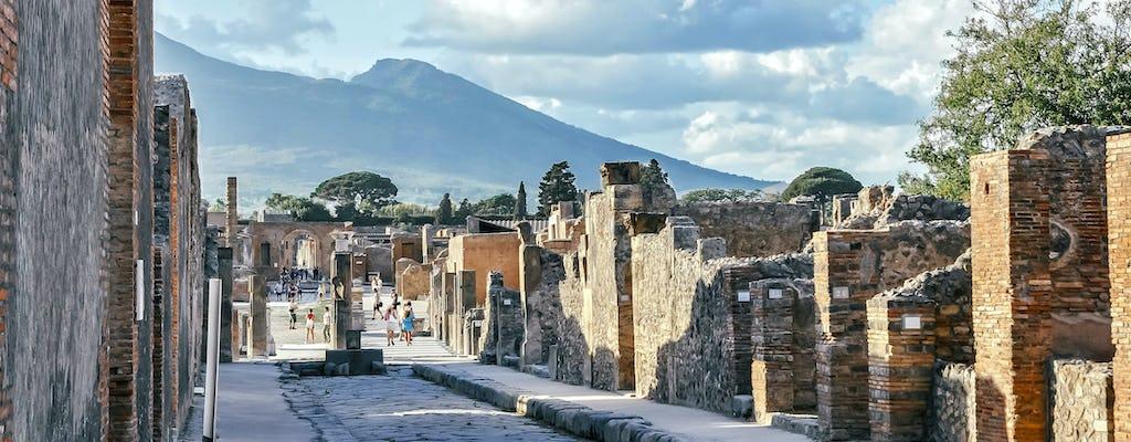 Tour selecionado por Pompeia e Herculano