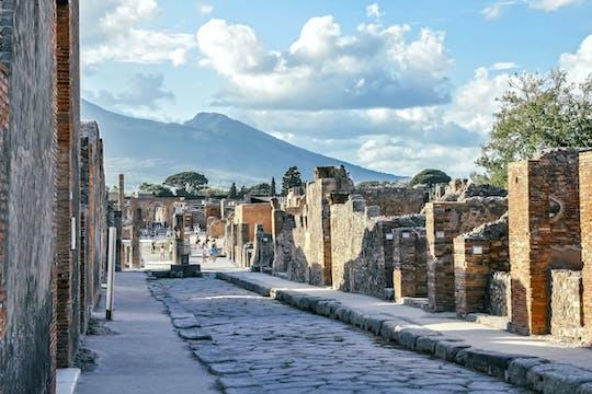 Wybierz wycieczkę do Pompei i Herkulanum