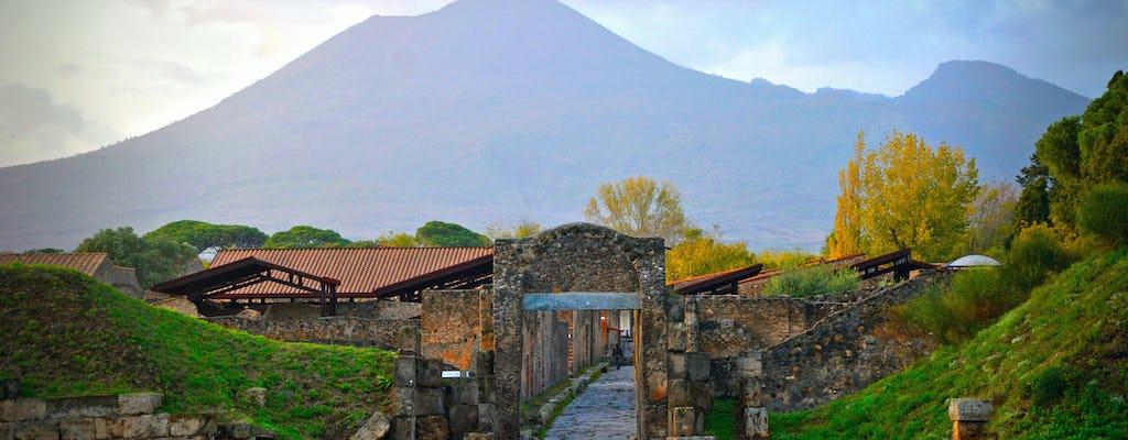 Wycieczka do Pompejów i Wezuwiusza
