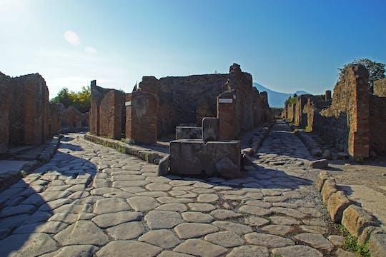 Pompeii and Herculaneum tour from Sorrento