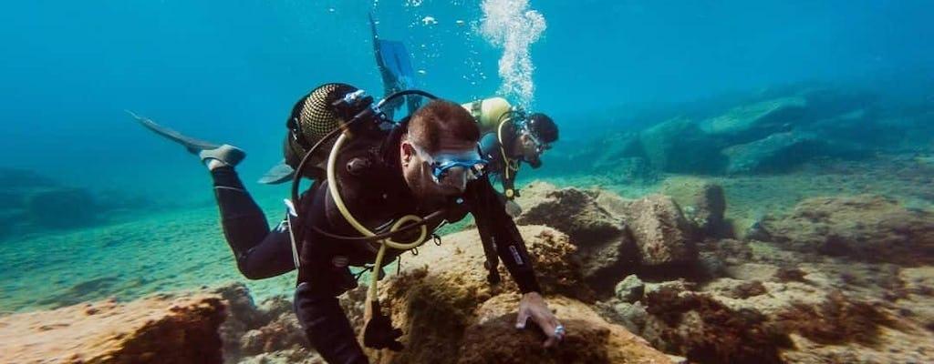 Tenerife Eco Scuba Diving Experience