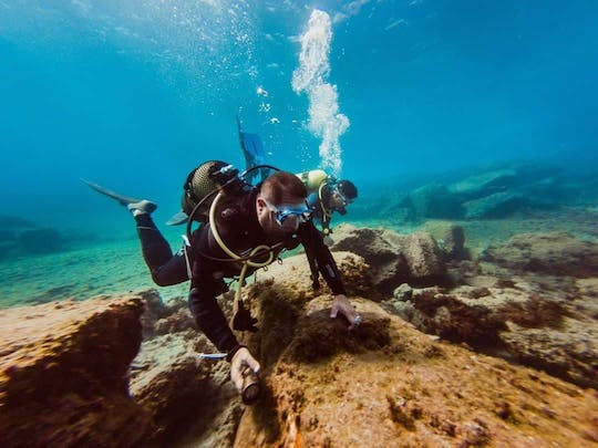 Adapted Diving Experience in Tenerife