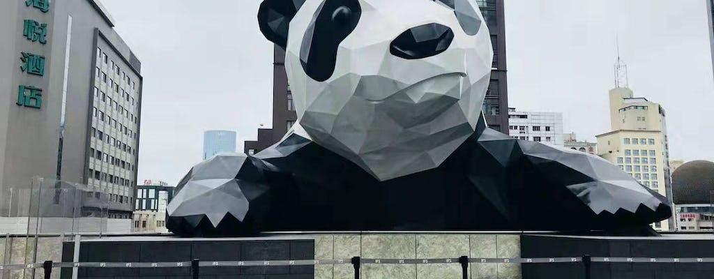 Tour privado de día completo ¡Todo es experiencia Panda!