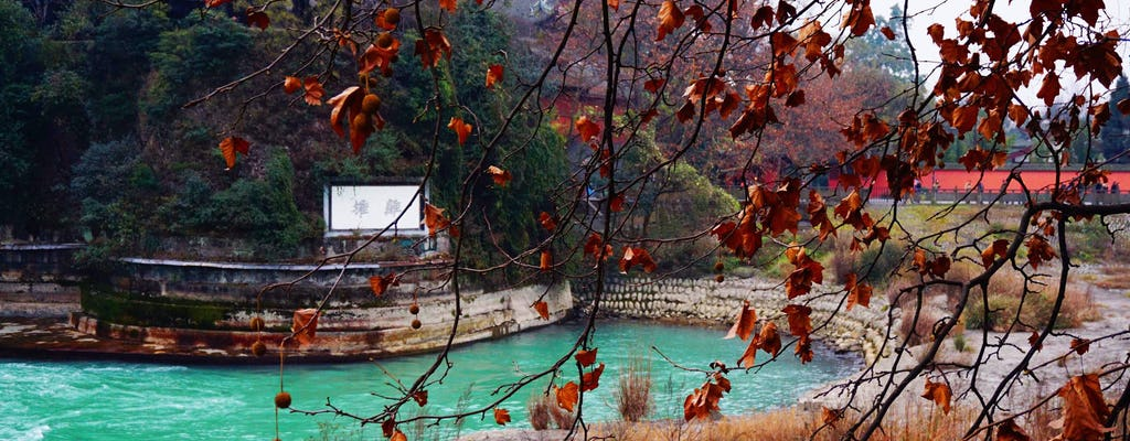Tour privado de dia inteiro na montanha taoísta e irrigação Dujiangyan