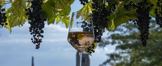 Privé Etyek-wijntour en diner met avondrondvaart op de rivier de Donau