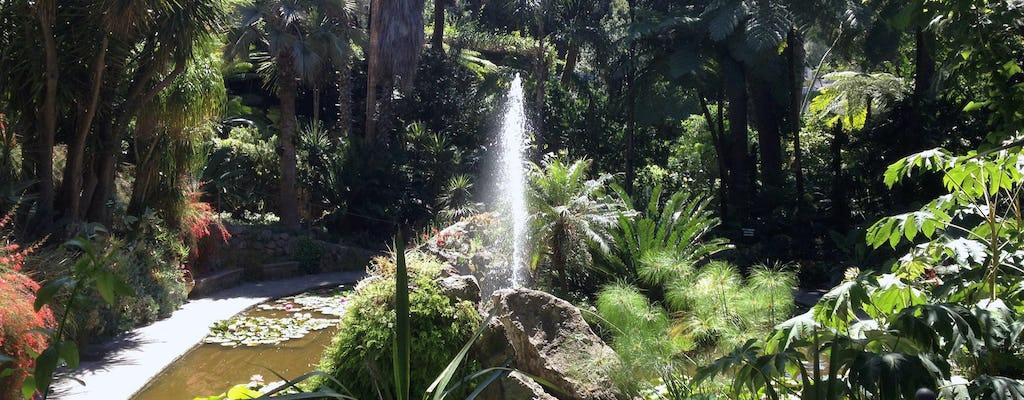Ischia und La Mortella Gardens Tour