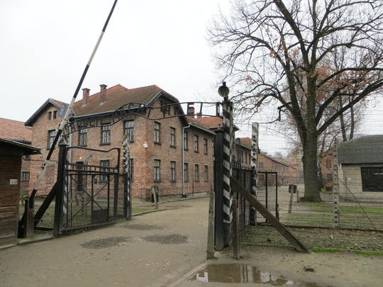 Auschwitz- Birkenau and Salt Mine guided tour with private driver