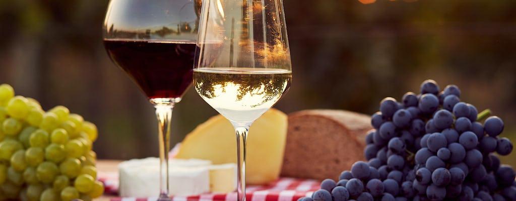 Brunello di Montalcino wine tour from Florence