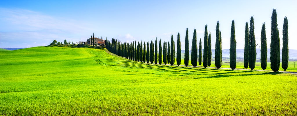 Private day trip to Montalcino, Pienza and Montepulciano from Florence