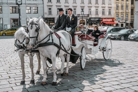 Secrets of the Viennese Fiaker andcarriage ride