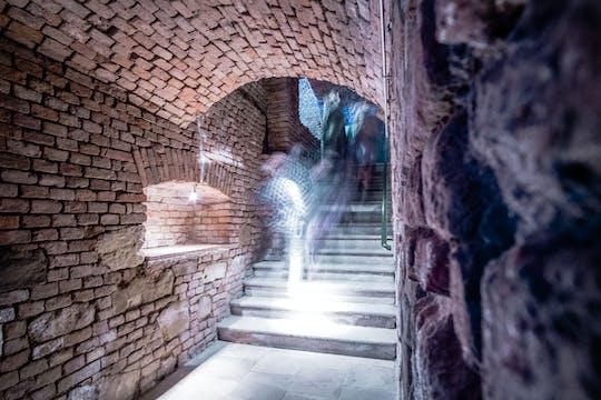 Viennese wine tasting in a roman wine-cellar