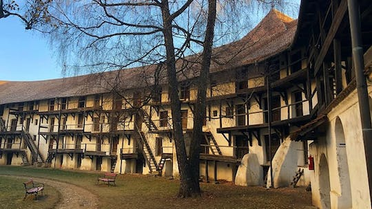 Small-group half-day tour to the Fortified Churches from Brasov