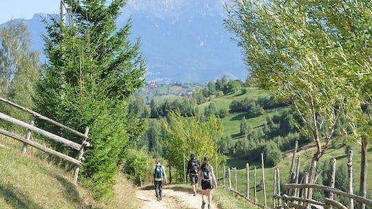 Randonnée privée au parc national de Piatra Craiului au départ de Brasov