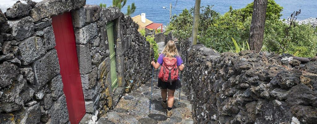 Escursione a Caminho dos Burros dall'isola di Pico