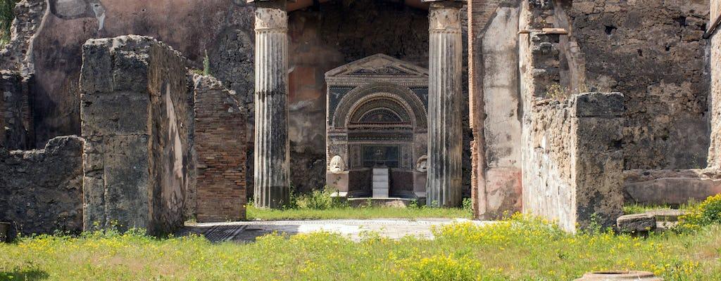Pompeii Halvedag van de kust van Amalfi