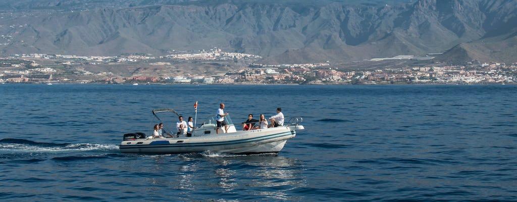 Croisière écologique avec observation des dauphins à Tenerife