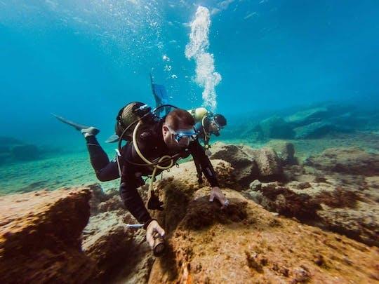 Expérience de plongée sous-marine adaptée à Tenerife
