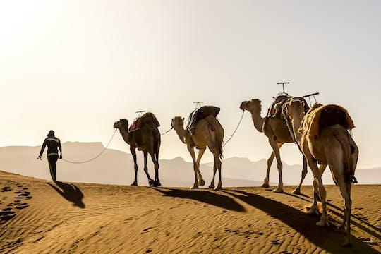 Safari en camello por el desierto en Agafay