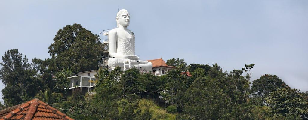 Excursion à Athugala Elephant Rock et Yapahuwa Rock Fortress au départ de Kandy