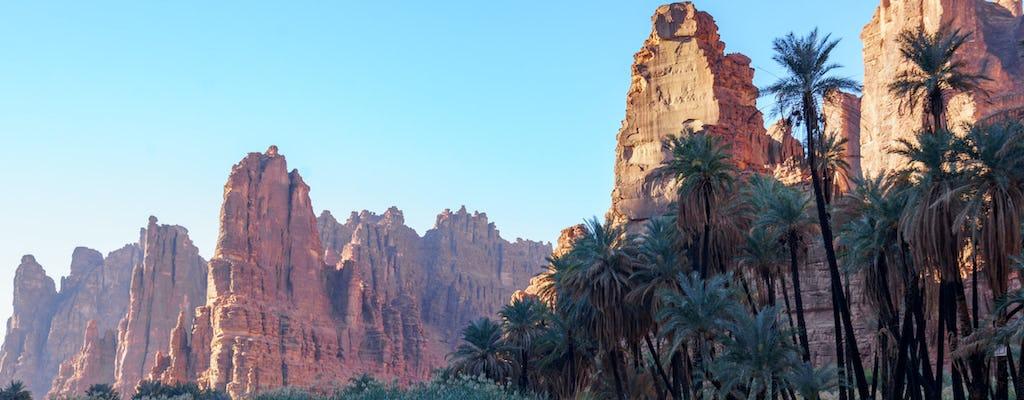 Wadi Al Disah valley full-day tour from Tabuk
