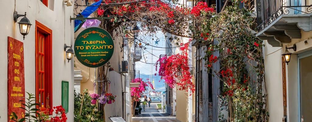 Tour privato di un'intera giornata a Micene, Epidauro e Nafplio da Atene