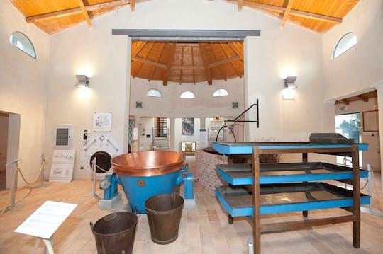 Biglietti per il Museo del Parmigiano Reggiano a Soragna