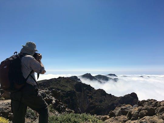 Randonnée au plus haut point de l'île de La Palma avec transfert