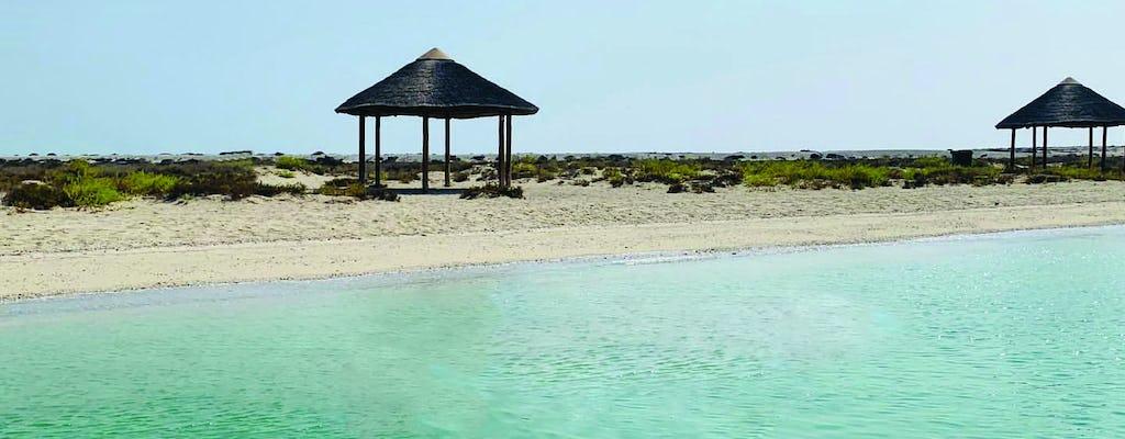 Cruzeiro Dhow de 3 horas para a Ilha Al Safliya