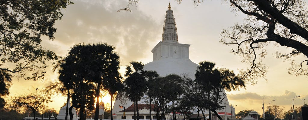 Anuradhapura alte Königreichstour von Colombo