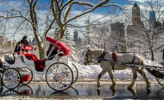 Passeios a cavalo e de carruagem no Central Park