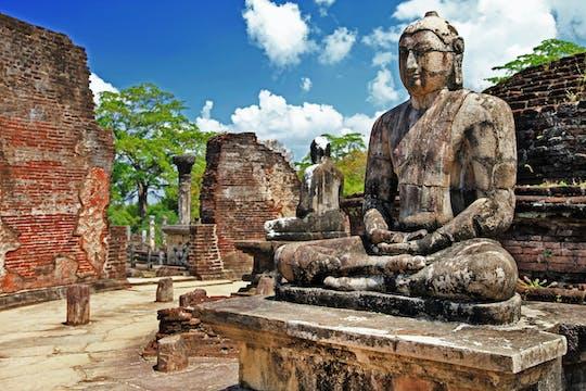 Polonnaruwa and Minneriya with train ride from East Coast