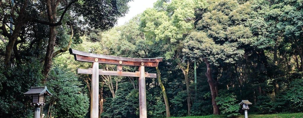Visite de dégustation de Meiji Jingu et matcha