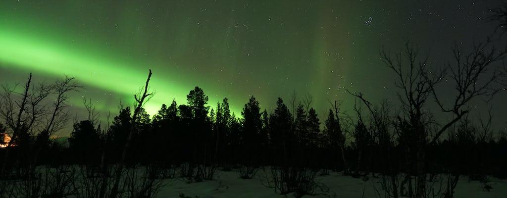 Tour più lungo dell'aurora boreale da Kiruna con cena