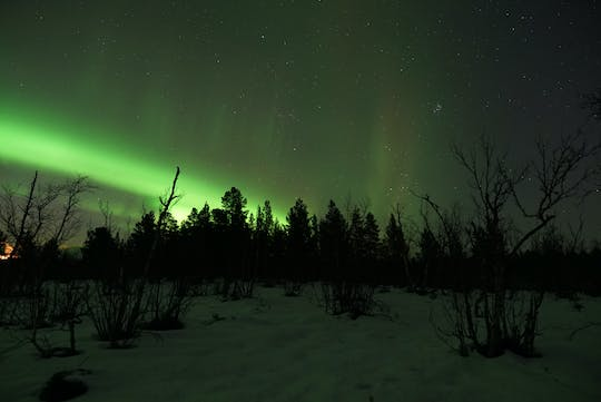 Longest Northern Lights tour from Kiruna with dinner