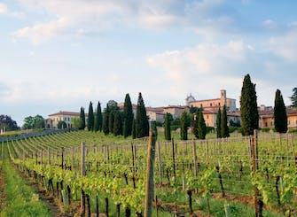 Franciacorta e Monte Isola in Minivan privato da Milano o Verona