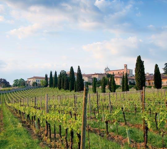 Franciacorta y Monte Isola en minivan privado desde Milán o Verona